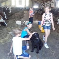 boerderijcamping-5