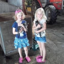 boerderijcamping-9